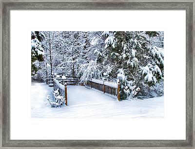 Beauty Of Winter Framed Print by Kathy Jennings