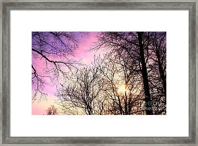 Beauty On Earth Framed Print by Michael Grubb