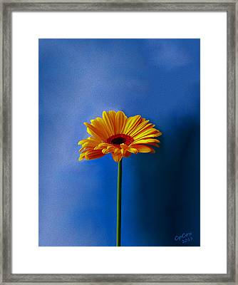 Beauty Out Of The Blue Framed Print