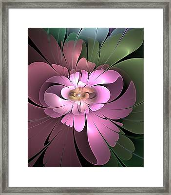 Beauty Queen Of Flowers Framed Print