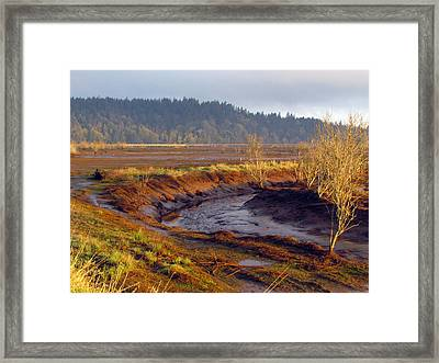 Framed Print featuring the photograph Beauty Revealed At Low Tide by I'ina Van Lawick