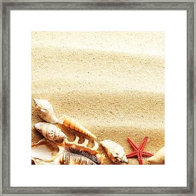 Beauty Sea Shell Framed Print by Boon Mee