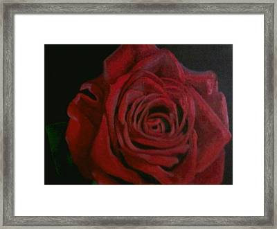 Beauty Framed Print by Thomasina Durkay
