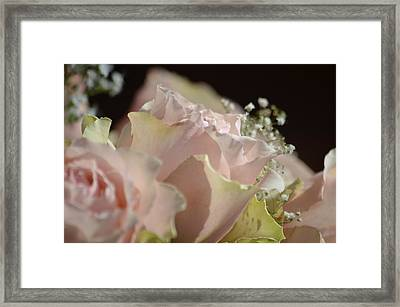 Beauty Up Close Framed Print