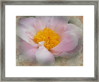 Beauty Woven In Framed Print