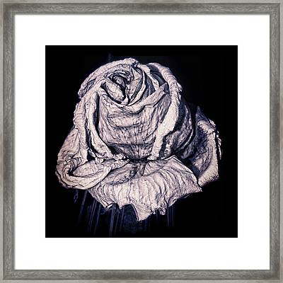 Beauty Wrinkle Framed Print