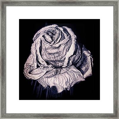 Beauty Wrinkle Framed Print by Kristi Swift