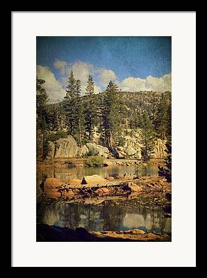 Ebbetts Pass National Scenic Byway Framed Prints