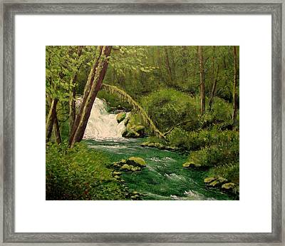 Beaver Creek Falls Framed Print by Kenny Henson