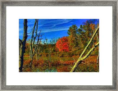 Beaver Marsh In October Framed Print