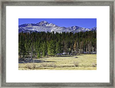 Beaver Meadows Framed Print by Tom Wilbert