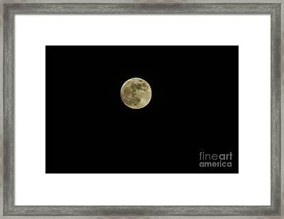 Beaver Moon 2012 Framed Print by Lynda Dawson-Youngclaus