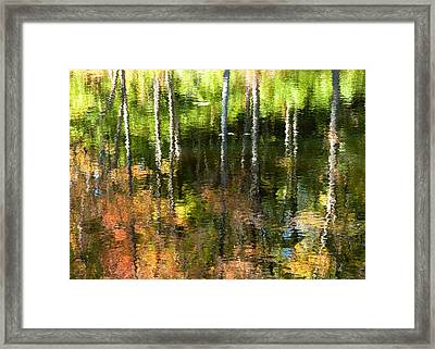 Beaver Pond Reflections 1 Gatineau Park Quebec Framed Print by Rob Huntley