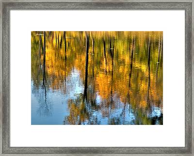 Beaver Pond Reflections 2 Framed Print by Rob Huntley
