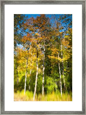 Beaver Pond Reflections 4 Framed Print by Rob Huntley