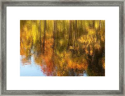 Beaver Pond Reflections Framed Print by Rob Huntley