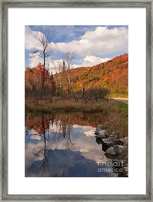Beaver Pond Symmetry Framed Print