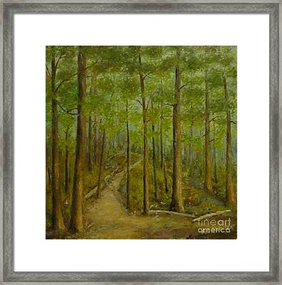 Beaver Pond Trail Framed Print