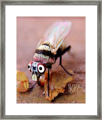 Framed Print featuring the photograph Beaver Tooth Fly by Chris Fraser
