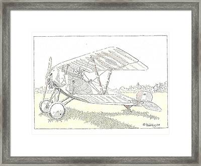 Bebe Framed Print by L D Williams