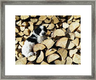 Because It Is There Framed Print by Brian Boyle
