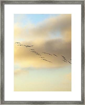 Because We Can Framed Print by Joe Schofield
