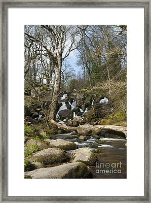 Becky Falls Dartmoor Framed Print by Donald Davis