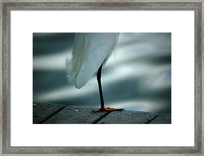 Bed Time Framed Print