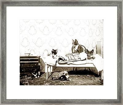 Framed Print featuring the photograph Bed Time For Kitty Cats Histrica Photo Circa 1900 by California Views Mr Pat Hathaway Archives