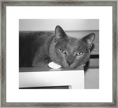 Bedroom Eyes Framed Print