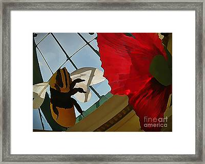 Bee And Flower Framed Print by John Malone