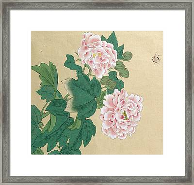 Bee And Peony Framed Print