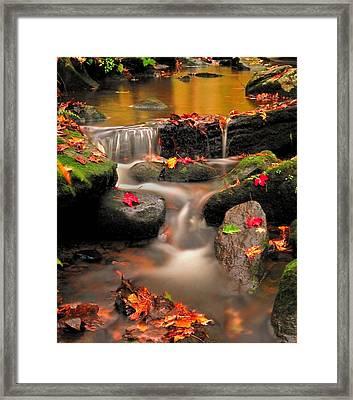 Gentle Cascades Of Autumn  Framed Print by Thomas Schoeller