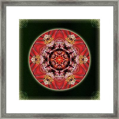 Bee Green Framed Print