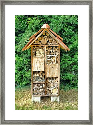 Bee House Framed Print by Olivier Le Queinec