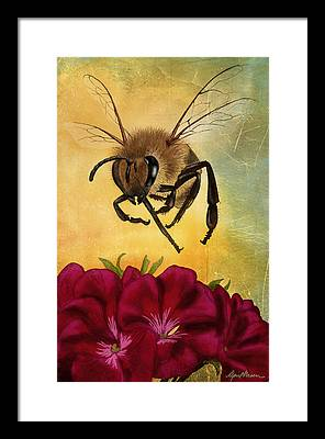 Honey Bee Framed Prints