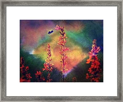 Bee N Wildflowers Diamond Earth Tones Framed Print by Christina Shaskus