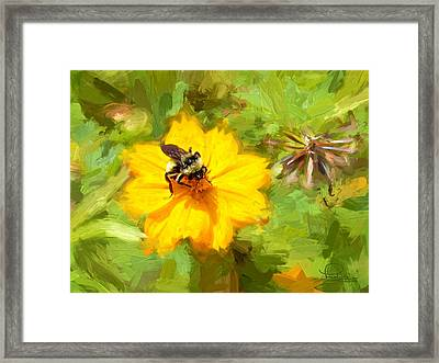 Bee On Flower Painting Framed Print by Ludwig Keck