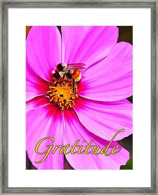 Gratitude 1 Framed Print