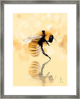 Bee Framed Print by Veronica Minozzi