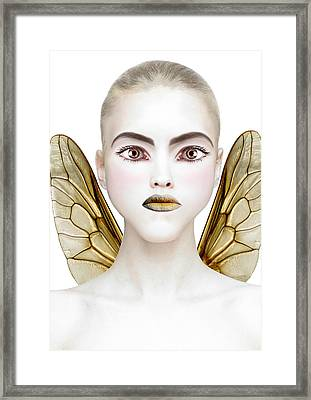 Bee Framed Print by Yosi Cupano