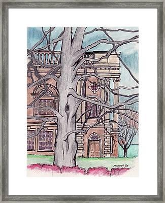 Beech Tree Framed Print