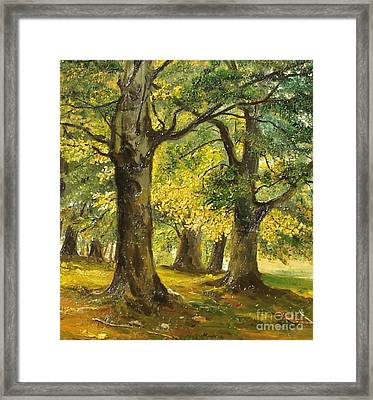 Beeches In The Park Framed Print