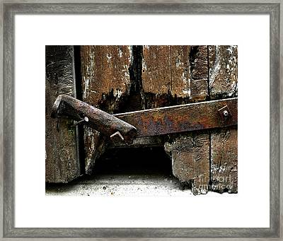 Framed Print featuring the photograph Been There by Newel Hunter