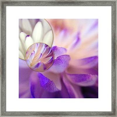 Framed Print featuring the photograph Bee's Eye View by Susan Maxwell Schmidt