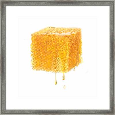 Bees Work Objectified  Framed Print by Floriana Barbu