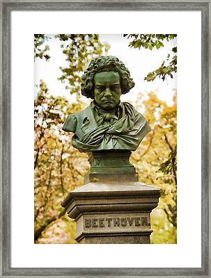 Beethoven In Central Park Framed Print by Alice Gipson