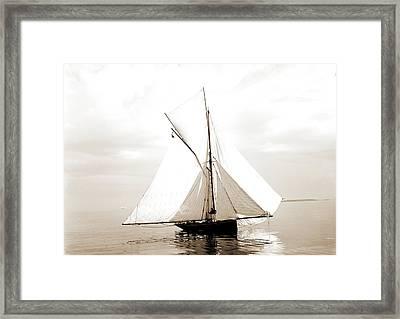 Beetle, Beetle Yacht, Yachts Framed Print