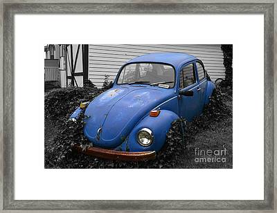 Framed Print featuring the photograph Beetle Garden by Angela DeFrias