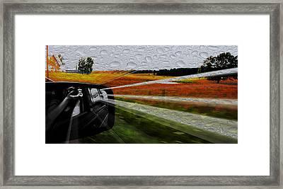 Beewbeew Framed Print by Stephanie Gavin